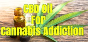 CBD Oil For Cannabis Addiction