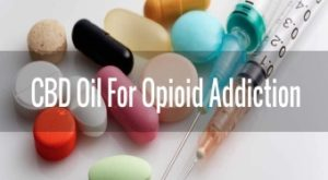 CBD Oil For Opioid Addiction